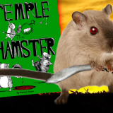 "DCC Adventure ""Temple Of The Hamster"" Now On Sale!"