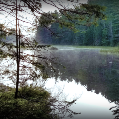 Real Life Adventures: Algonquin Park