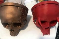 SkullTrophies